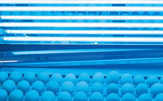 UV Industry of the Month: Egg Disinfection